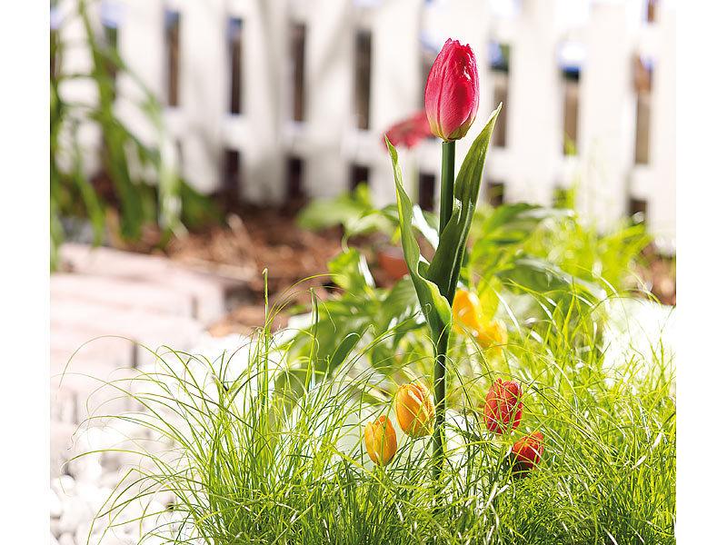 lunartec solarblumen f r balkone schimmernde led tulpen mit solarbetrieb im 2er set solar. Black Bedroom Furniture Sets. Home Design Ideas