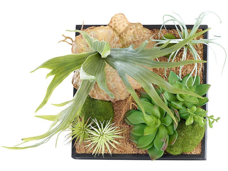 carlo milano vertikaler wandgarten lena mit deko pflanzen 3er set. Black Bedroom Furniture Sets. Home Design Ideas