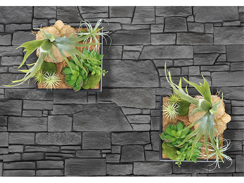 carlo milano vertikaler wandgarten lena mit deko pflanzen 20 x 20 cm. Black Bedroom Furniture Sets. Home Design Ideas