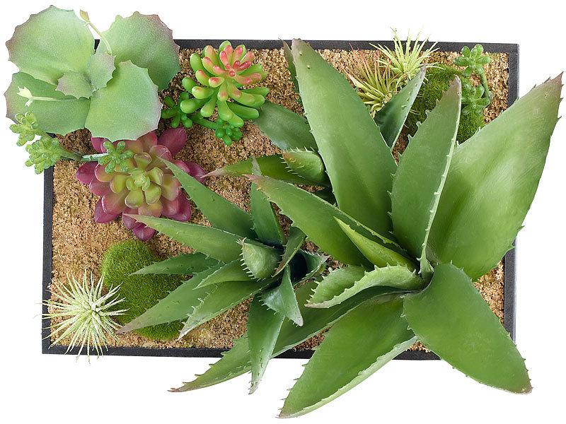 carlo milano vertikaler wandgarten lara mit deko pflanzen 20 x 30 cm. Black Bedroom Furniture Sets. Home Design Ideas