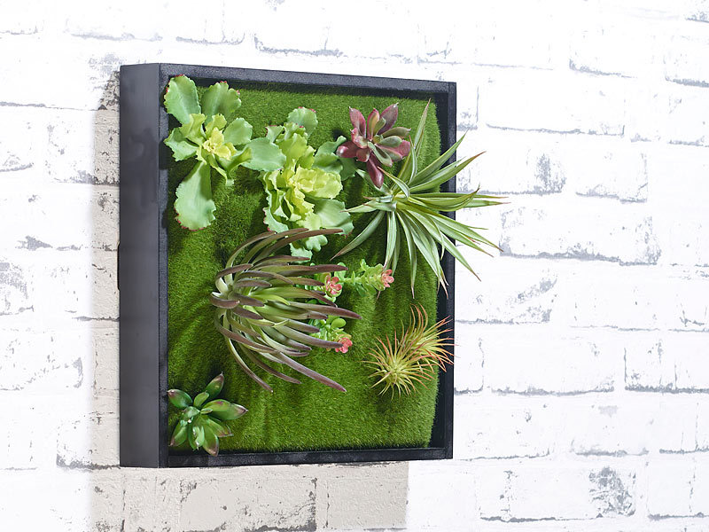 carlo milano pflanzenbilder vertikaler wandgarten karl mit deko pflanzen 30 x 30 cm pflanzen. Black Bedroom Furniture Sets. Home Design Ideas