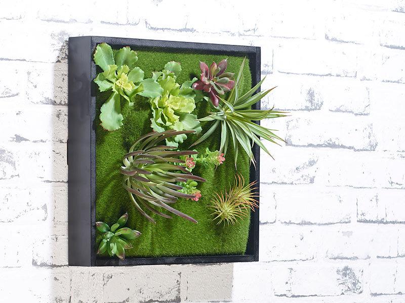 Carlo milano vertikaler wandgarten karl mit deko pflanzen 30 x 30 cm - Vertikaler wandgarten ...