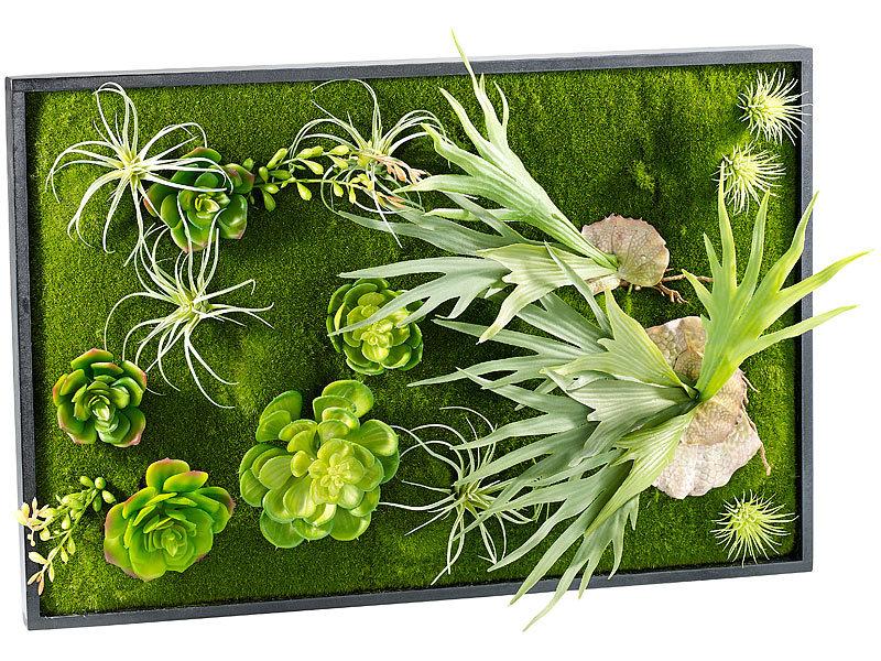 Carlo milano vertikaler wandgarten knut mit deko pflanzen for Pflanzen deko wand