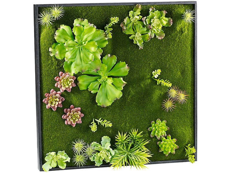 Carlo milano pflanzenw nde vertikaler wandgarten ken mit deko ranken 60 x 60 cm vertikaler - Vertikaler wandgarten ...