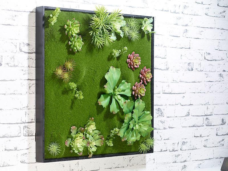 Carlo milano bild pflanze vertikaler wandgarten ken mit deko ranken 60 x 60 cm wandbepflanzungen - Vertikaler wandgarten ...