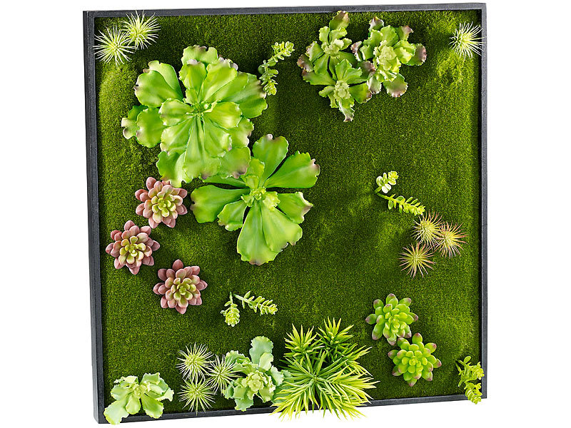 Wandgarten Selber Machen carlo minigärten vertikaler wandgarten kurt mit deko