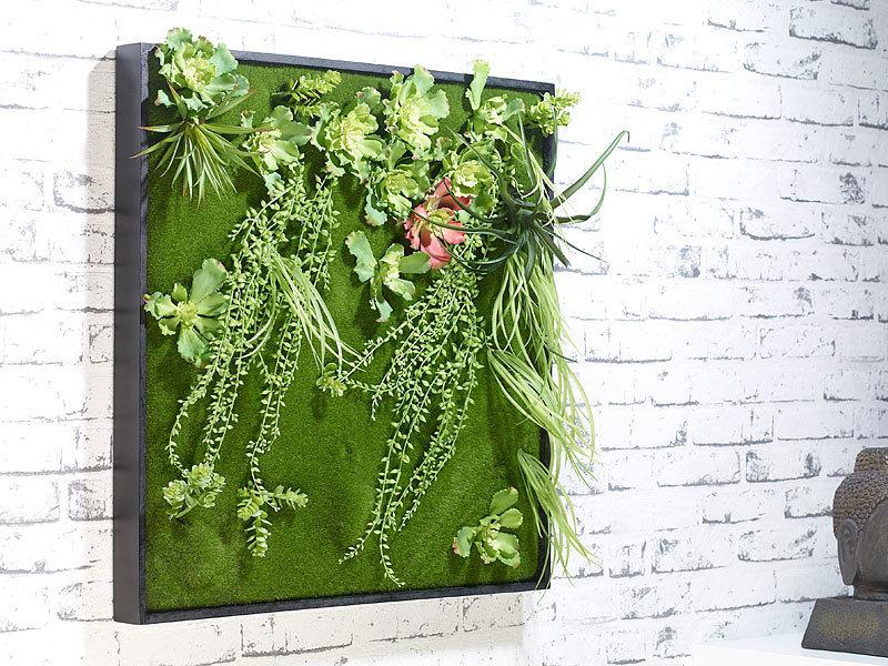 Carlo milano vertikaler wandgarten kurt mit deko pflanzen 60 x 60 cm - Vertikaler wandgarten ...