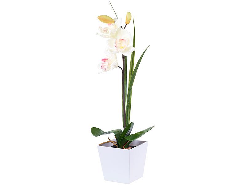 Lunartec Blumen: LED-Orchidee \