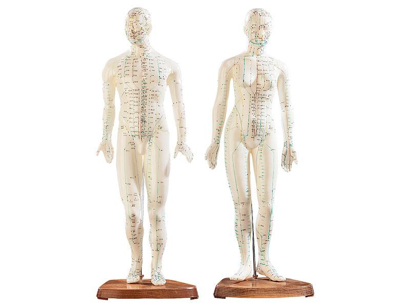 newgen medicals Akupunktur Puppen: Akupunktur-Figuren 2er-Set (Mann ...