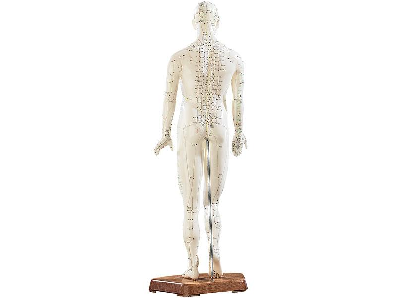 newgen medicals Akupunktur-Figuren: Akupunktur-Modell Mann (Meridian ...