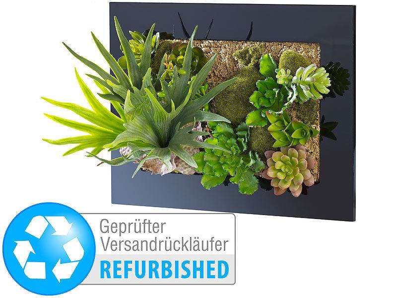 Carlo milano gr ne wand vertikaler wandgarten anna 30 x 25 cm versandr ckl ufer wandgarten - Vertikaler wandgarten ...