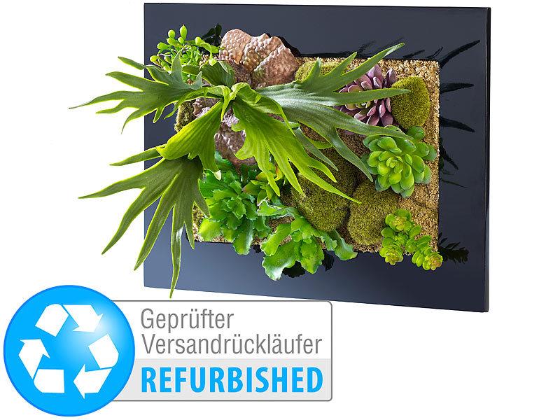 Carlo milano pflanzen deko vertikaler wandgarten nora 40 - Vertikale wandbepflanzung ...