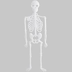 Halloween Skelett Halloween Deko Fur Gunstige 0 90 Kaufen