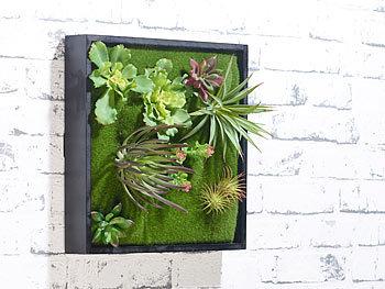 carlo milano pflanzenbilder vertikaler wandgarten karl. Black Bedroom Furniture Sets. Home Design Ideas