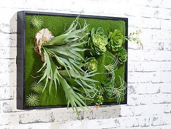 Carlo milano wandbegr nung vertikaler wandgarten knut mit deko pflanzen 60 x 40 cm minig rten - Vertikaler wandgarten ...