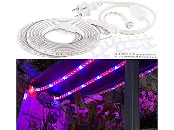 6 Meter LED-Pflanzen-Wachstums-Streifen, rot & blau, mit Netzteil / Pflanzen Led