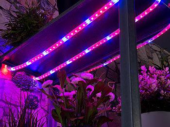 fotos von lampen für pflanzen