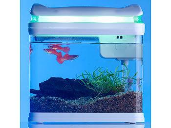 Häufig Sweetypet Aquarium: Transport-Fischbecken mit Filter, LED OX35