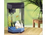 infactory Panorama-<br />S&auml;ulen-Aquarium &quot;Neptun&quot; 7 Liter