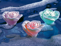 Lunartec LED-<br />Wasserrosen mit Farbwechsler (3er-Set)