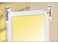 Tempelhund-Paar f&uuml;r<br />LCD/Plasma-Monitore/Fernseher h&auml;...